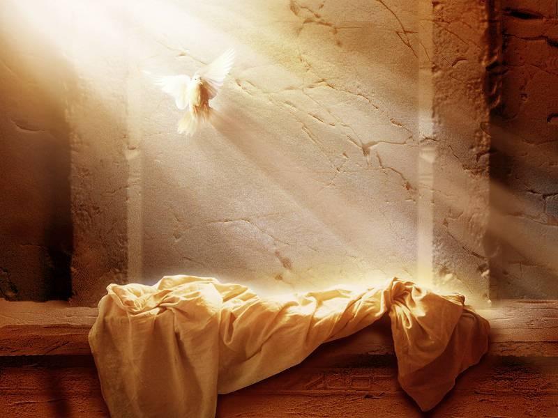 Rojeni za večno življenje