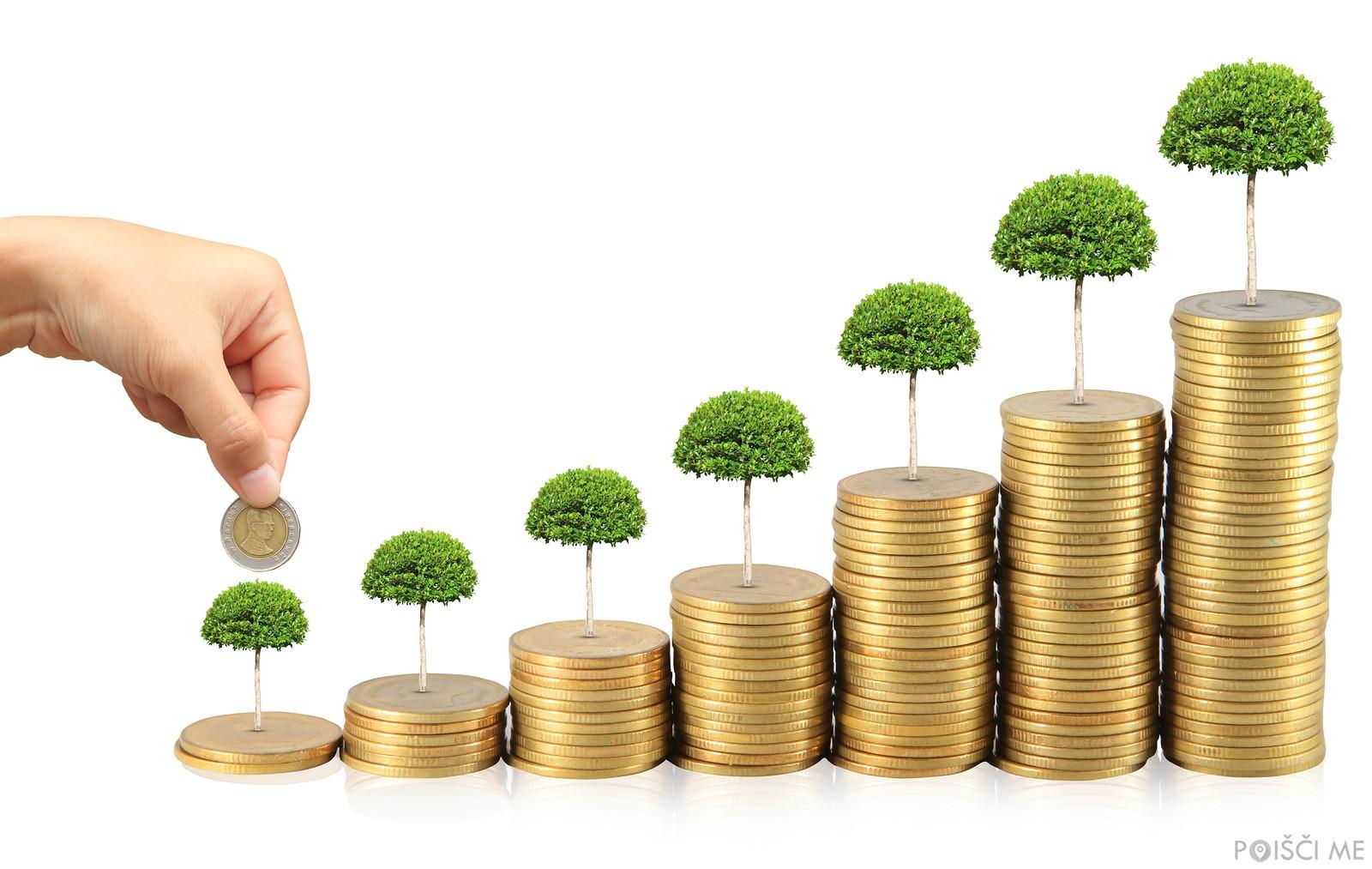 Kdo so finančni svetovalci?