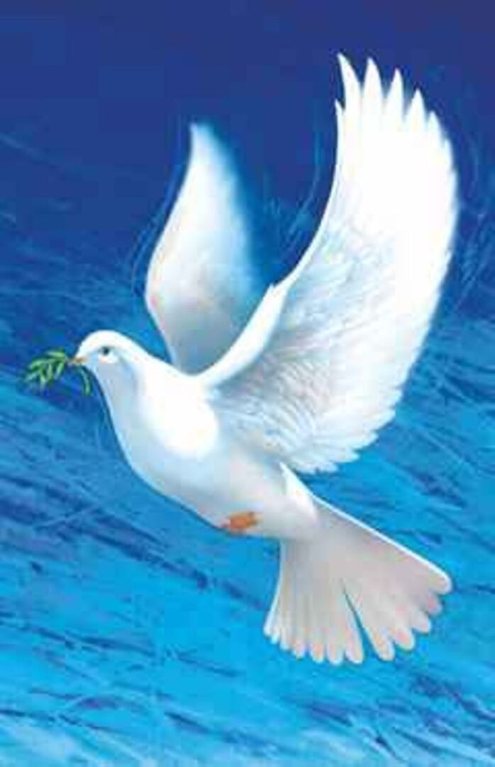 Binkošti se imenujejo tudi »praznik Svetega duha« in nastopi 50. dan po veliki noči, oznanjajo pa prihod Svetega Duha, ki naj bi se po Lukovem evangeliju z ognjem in viharjem spustil na zbrane apostole.