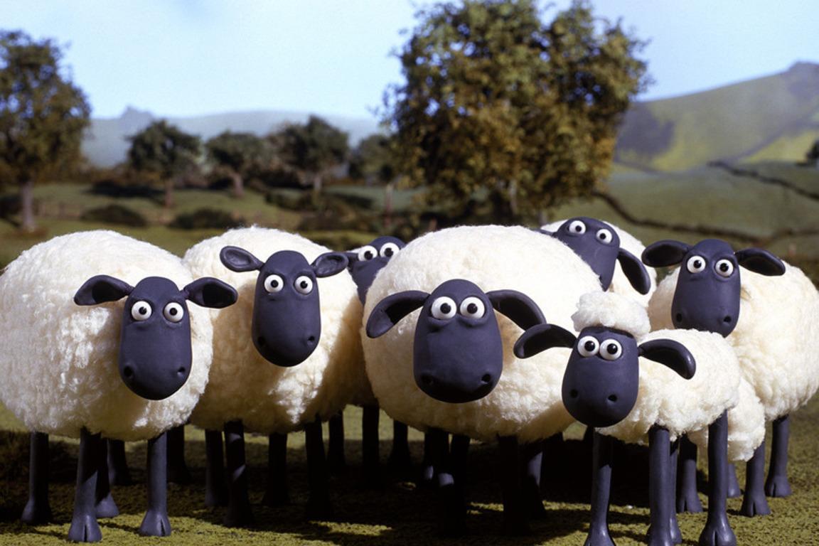 Šala dneva: Uradnik in ovce