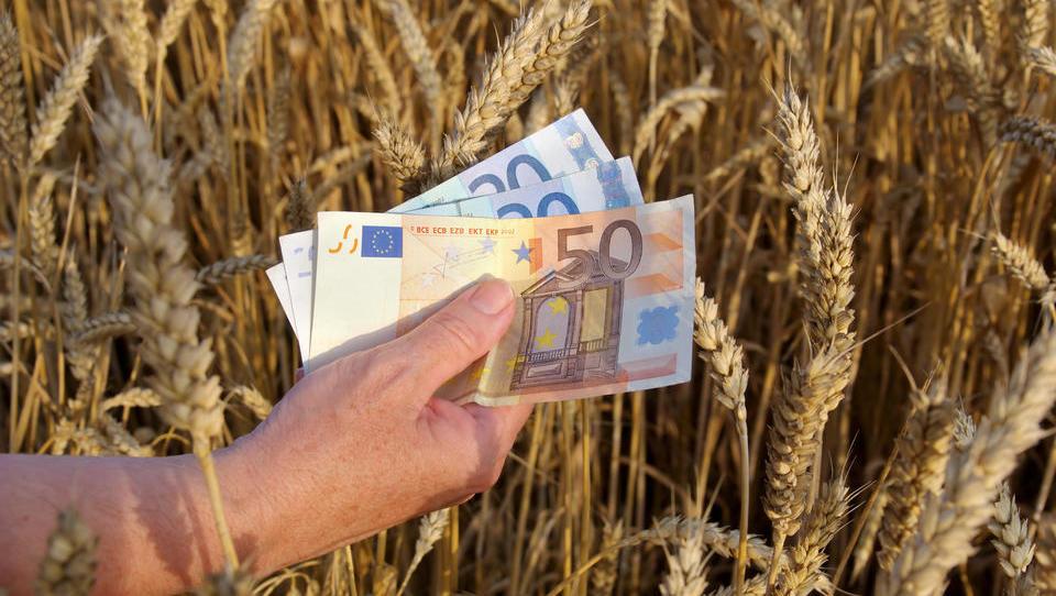 Ukrepi skupne kmetijske politike 2019