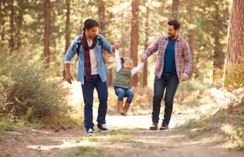 Istospolni partnerji bodo po novem Družinskem zakoniku lahko posvojili otroke?