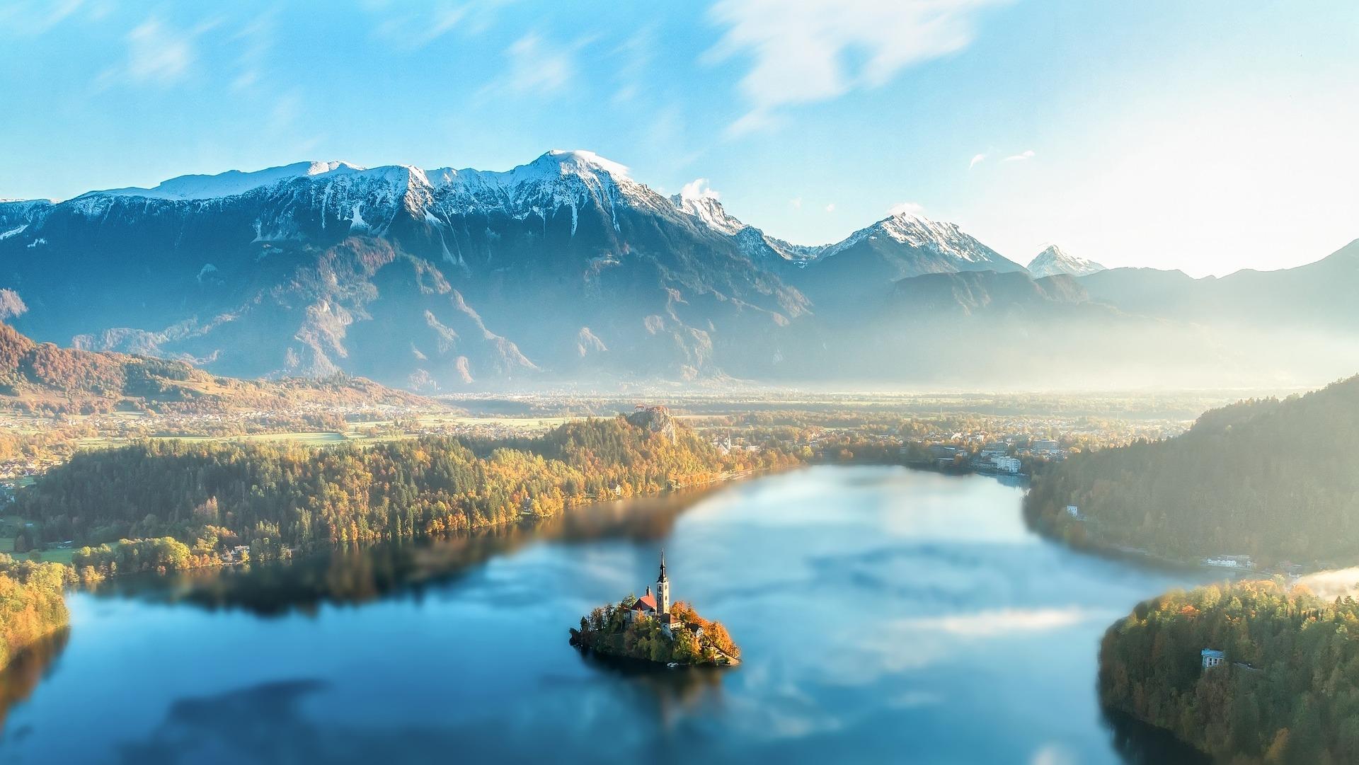 Slovenski divji cvet in čebelji raj – Kam na izlet?