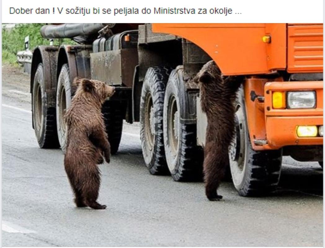 Šala dneva: Medvedi na ministrstvo