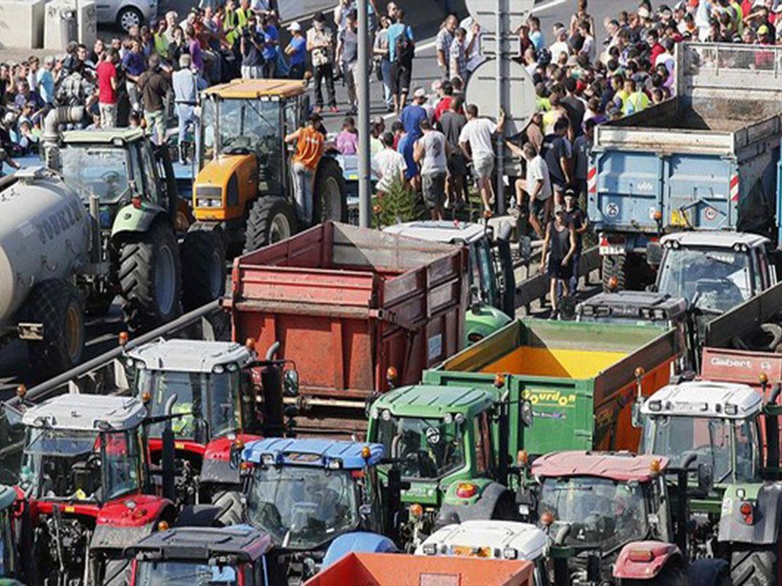 Protesti zaradi napadov zveri se bodo zaostrovali z zaporami cest