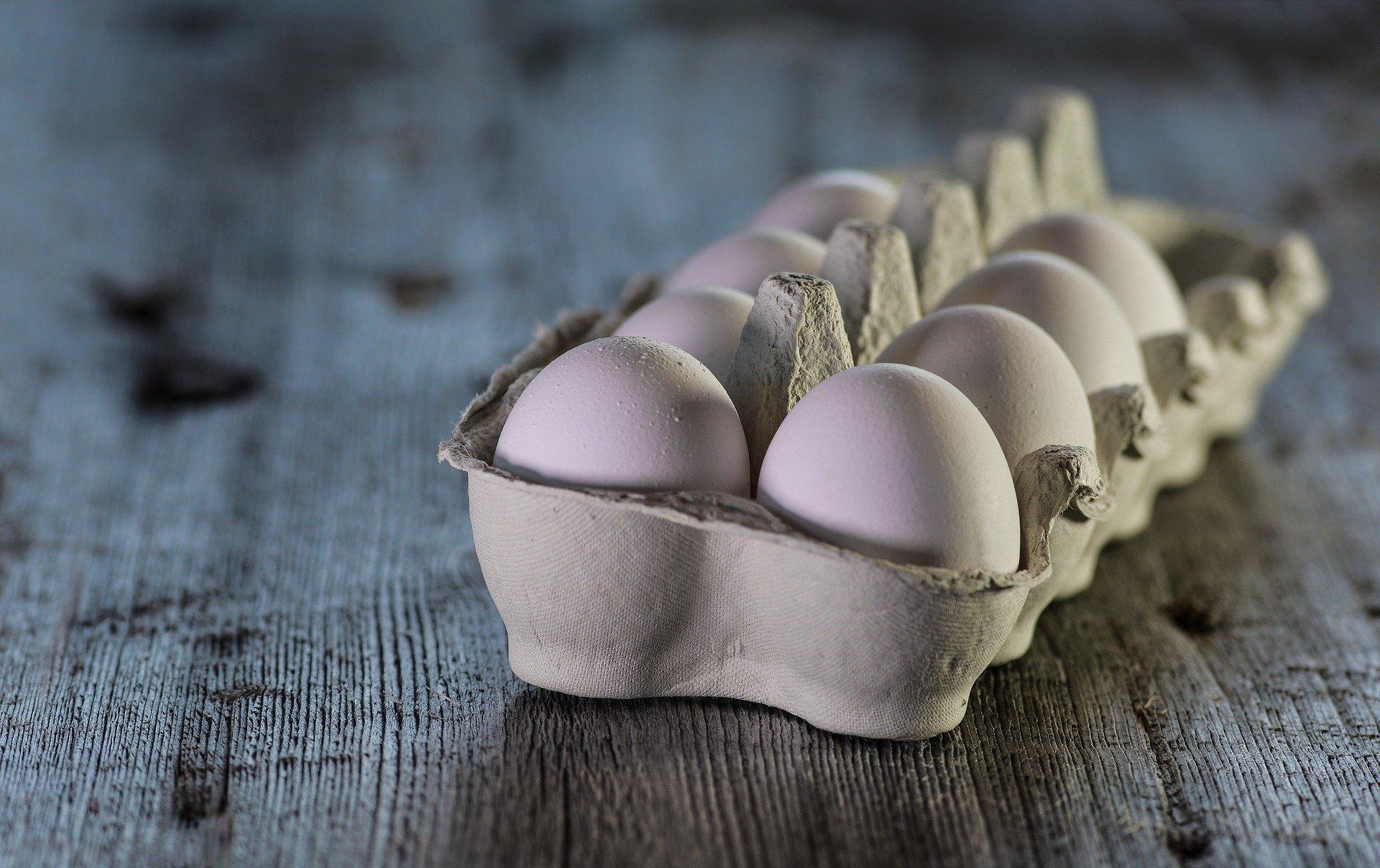 Šala dneva: Jajca