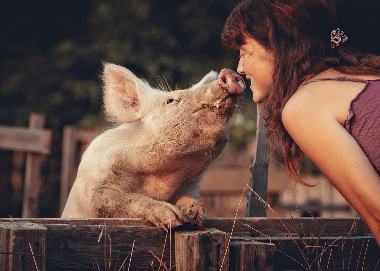 Živali, za katere v mnogih človeških srcih ni prostora