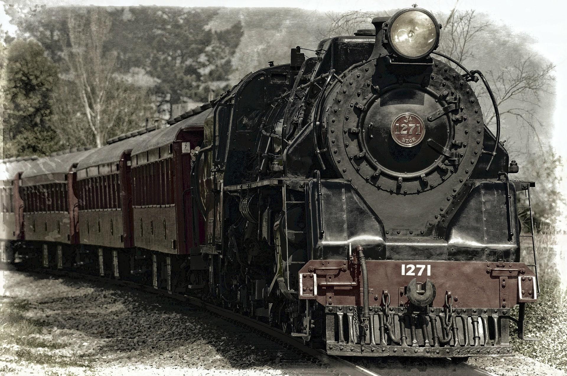Šala dneva: Vlak