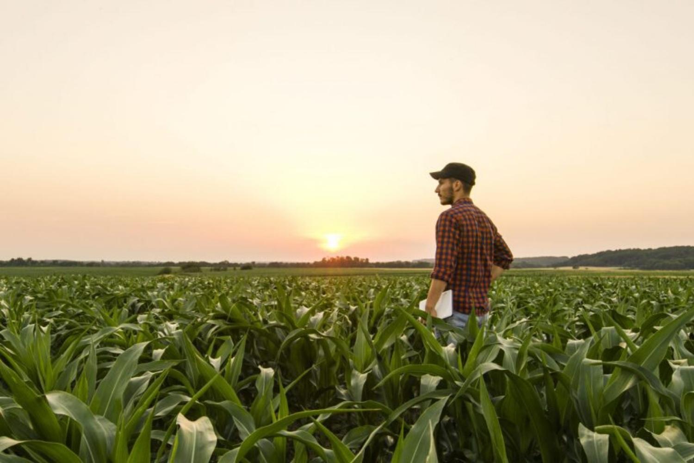 Vpliv agrarnih ekonomistov na slovensko kmetijsko politiko