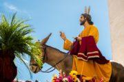 Bo Jezus letos sam ob vhodu v Jeruzalem?