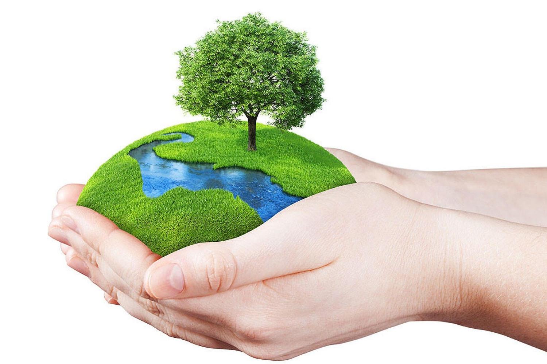 Okolje in narava sta najbolj zlorabljena pojma