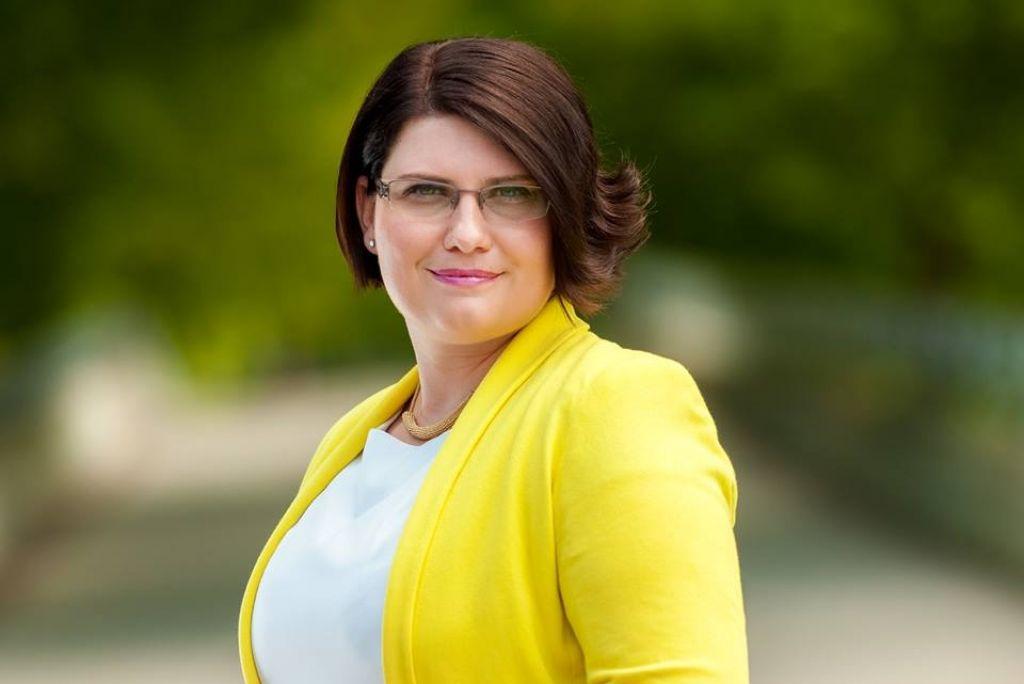 Aprila 2013 je takratna poslanka SLS Jasmina Opec vložila pisno poslansko pobudo ministrici za delo, družino, socialne zadeve in enake možnosti dr. Anji Kopač Mrak glede vračila državnih pokojnin med določbe ZPIZ.