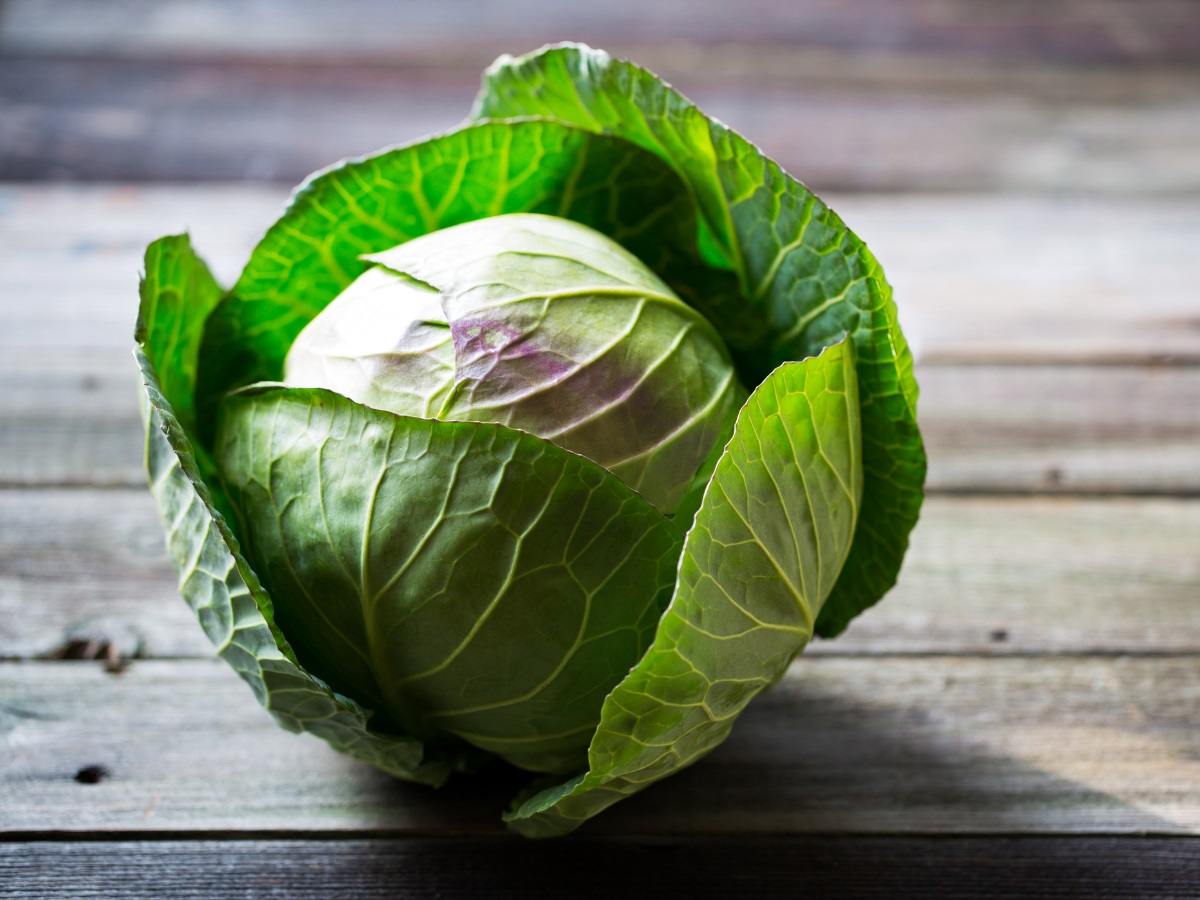 Iz domače kuhinje: zelje je nepogrešljivo živilo v vaši kuhinji