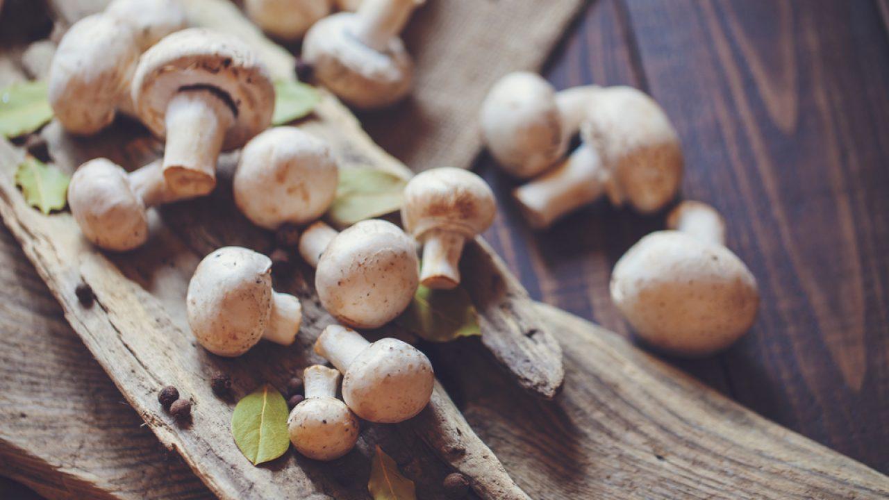 Iz domače kuhinje: jesenska kulinarika diši po gobah