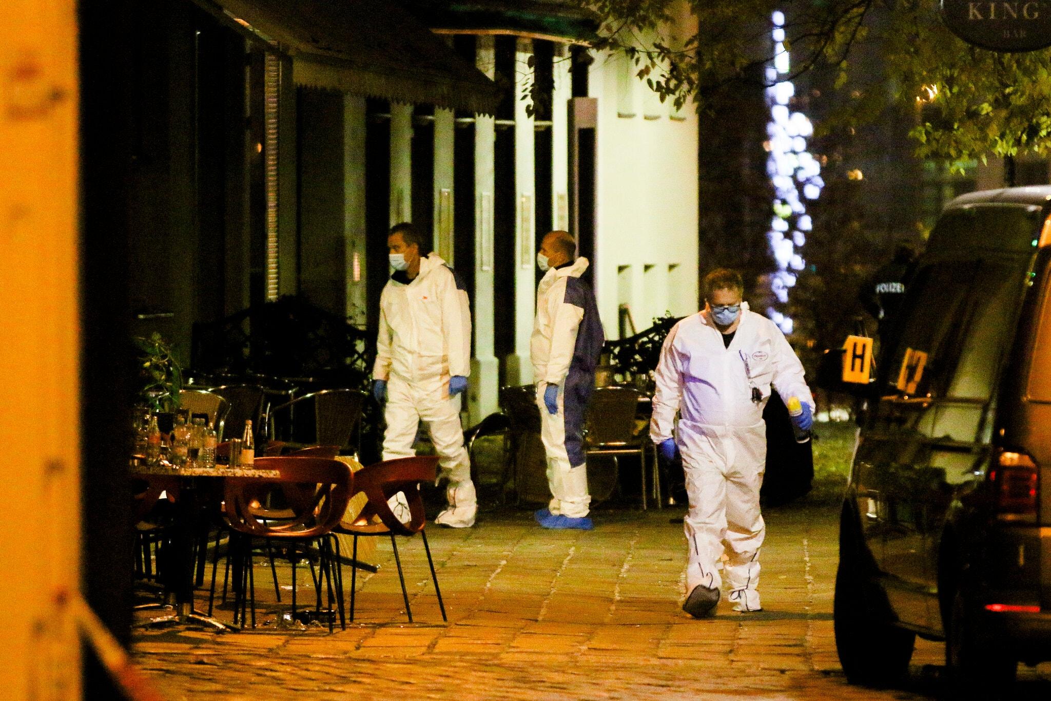 Džihadisti napadli na Dunaju. Kje bodo udarili naslednjič?