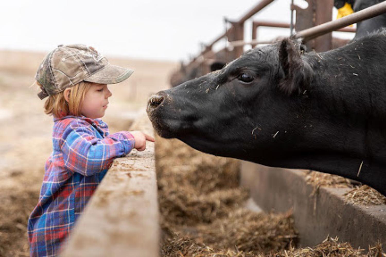 Vaš otrok želi postati vegetarijanec – kako odreagirati (in kako ne)