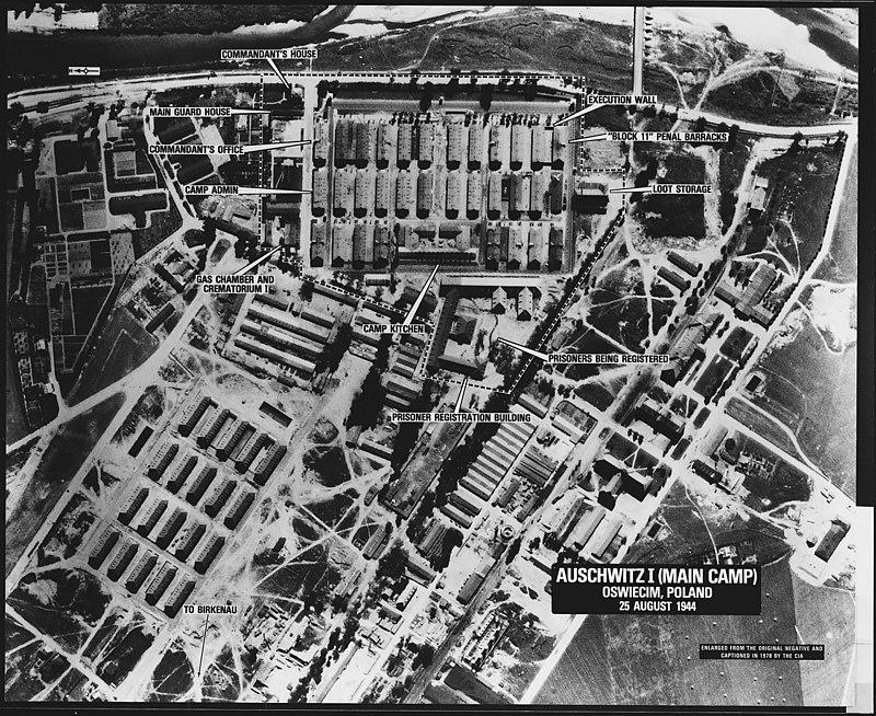 Žrtve so strpali skupaj na železniških postajah, jih naložili v živinske vagone in jih odpeljali v koncentracijska taborišča. V uničevalnih taboriščih na Poljskem so jih ubijali s plinom. V Auschwitzu in nekaterih drugih z uporabo pesticida, namenjenega ubijanju podgan. Najprej so pobili stare, zelo mlade in telesno šibke - tiste, ki niso mogli delati. Zračni posnetek dela kompleksa taborišča Auschwitz-Birkenau, posnet 25. avgusta 1944.