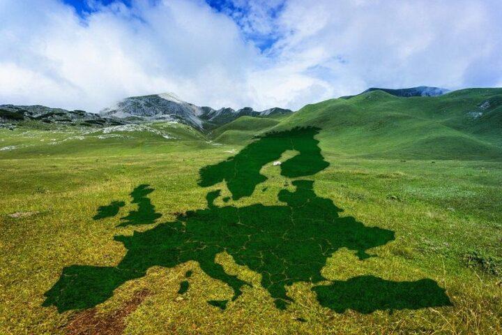 Zeleni in Evropska svobodna zveza (EFA)