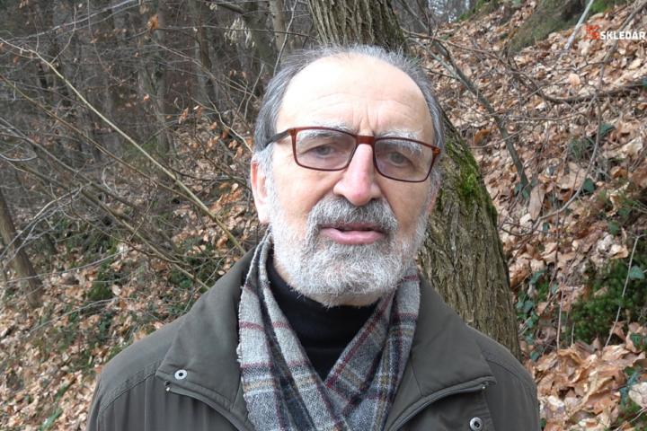 Prof. dr. Franc Pohleven: Lesnopredelovalna industrija je ključ do uspešne in zelene Slovenije