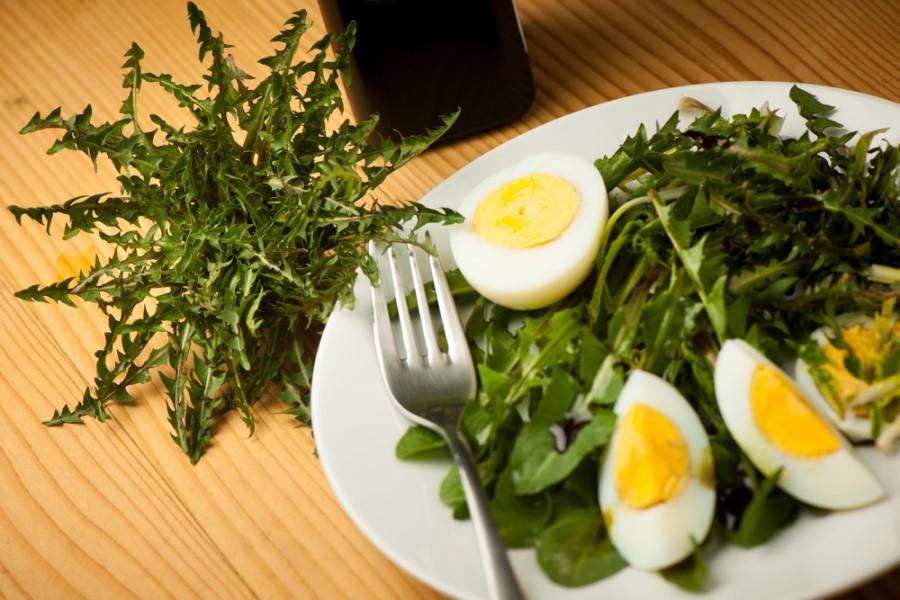 Regratova solata z jajci.
