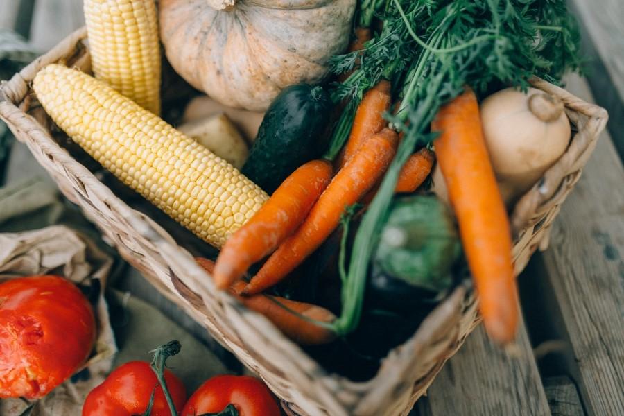 Samozadostno vrtnarjenje daje organske pridelke.