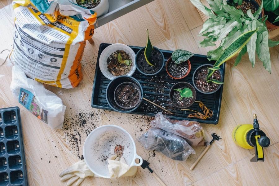 Samozadostno vrtnarjenje v urbanem okolju.