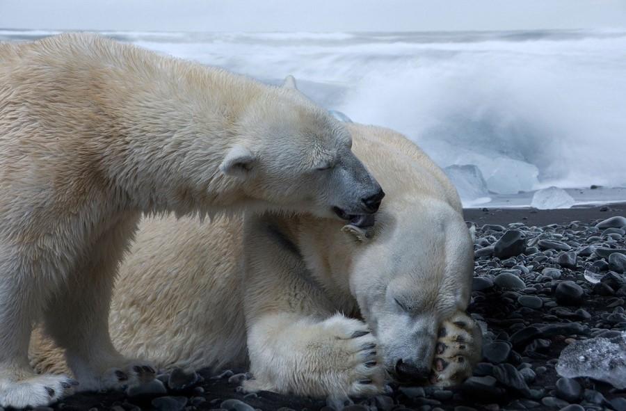 Se naša klima res spreminja? Deset mitov o klimatskih spremembah