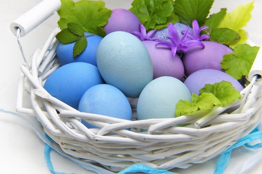 Če si želite modrih pirhov, boste morali poseči po borovnicah ali soku temnega grozdja.