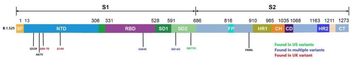 Mutacije nigerijskega seva.