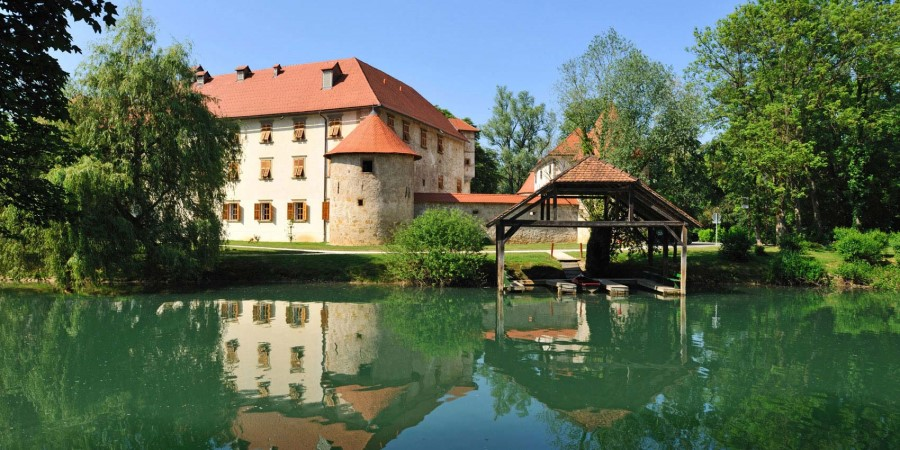 Grad Otočec je edini vodni grad v Sloveniji. Obdaja ga slikovit grajski park, v katerem rastejo črna jelša, bela vrba, topol in nekatera eksotična drevesa.