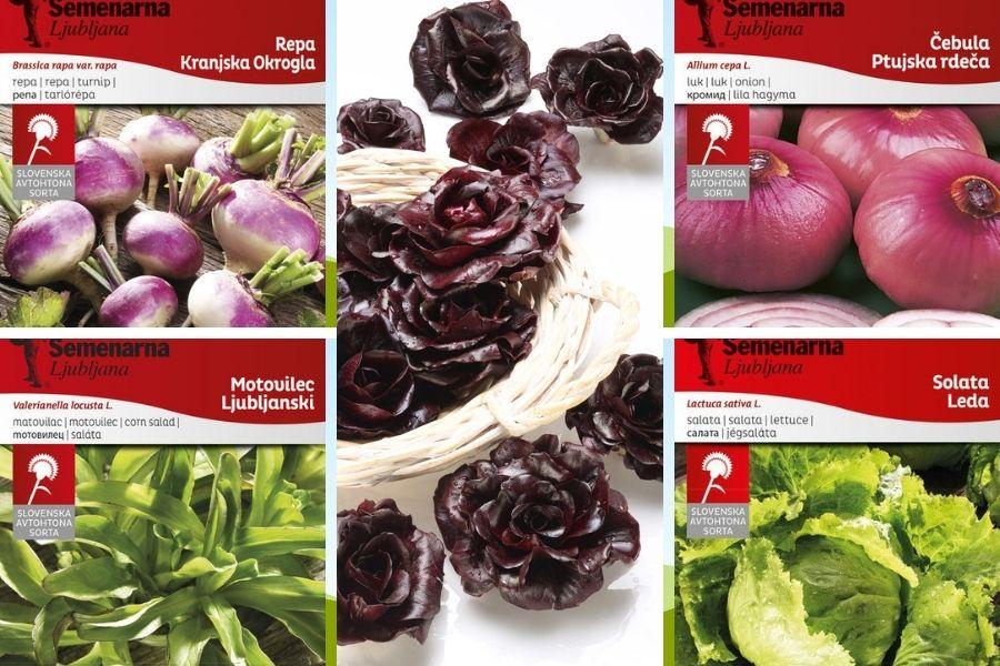 Od 50.000 avtohtonih rastlinskih vrst, ki so primerne za našo prehrano, dandanes pridelujemo samo še približno štirideset vrst. Med njimi so kranjska okrogla repa, ljubljanski motovilec, ptujska rdeča čebula, solata Leda in solkanski radič. Avtohtono seme je označeno z znako: slovenska avtohtona sorta.
