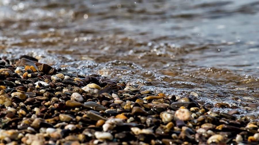 Kateri kamen se pogosto premiče, se ne obda z mahom.