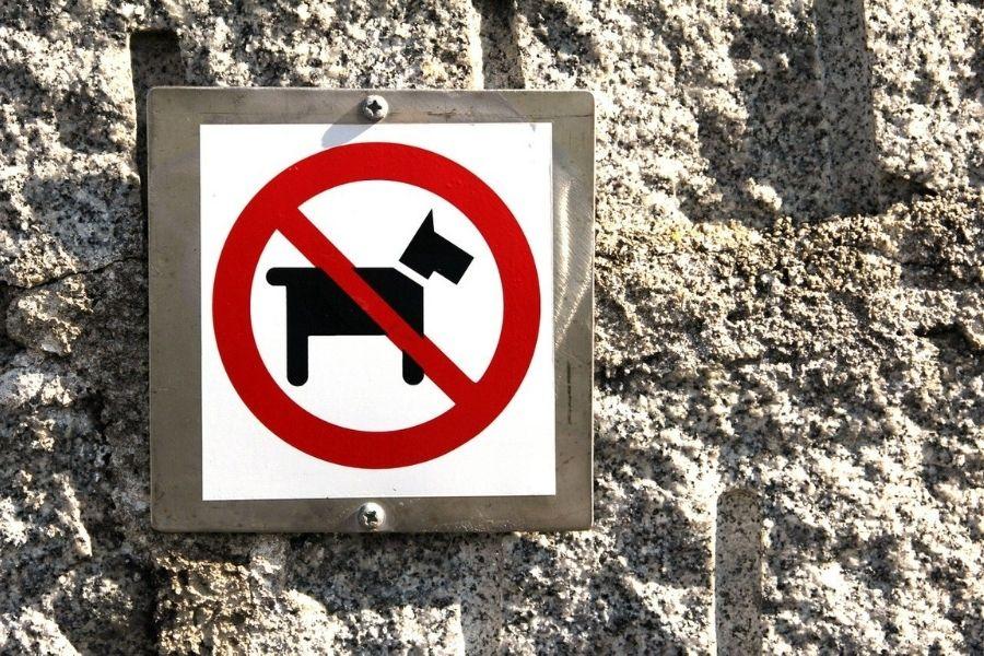 Psom vstop prepovedan!