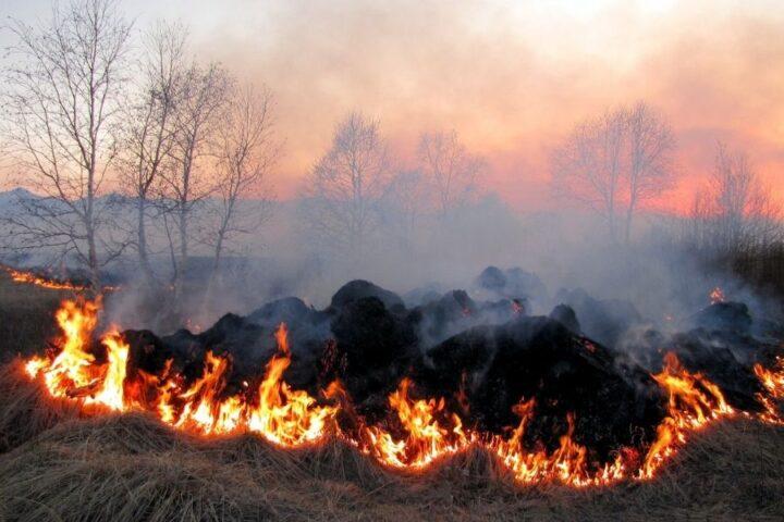 Previdno pri kurjenju v naravi in kaj lahko naredimo za manj odpadkov