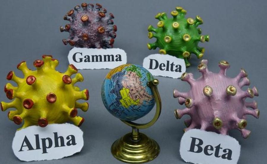 Delta Plus je mutacija B.1.617.2.1 ali AY.1. O njej je 11. junija prva poročala britanska vladna zdravstvena agencija.