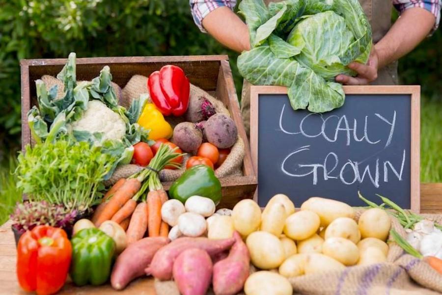 Začetek 20. stoletja se je s kmetijstvom v Sloveniji preživljalo več kot 90 % prebivalcev. Dandanes je ta procent okoli 3 %.