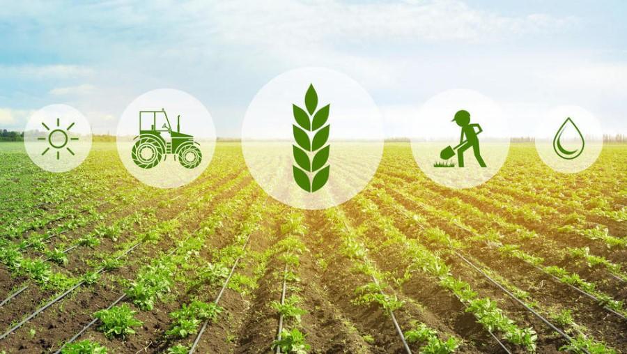 Dogovor predstavlja epilog tri leta trajajočih pogajanj na ravni EU o eni najpomembnejših evropskih politik ter ključni politiki za nadaljnji razvoj evropskega trajnostnega kmetijstva in podeželja.