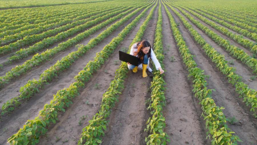 Prvič v zgodovini kmetijske politike EU je v zakonodaji jasno določena višina neposrednih plačil za manjše kmetije EU, in sicer 10 % ovojnice za neposredna plačila za t. i. obvezno prerazporeditveno plačilo za manjše kmete.