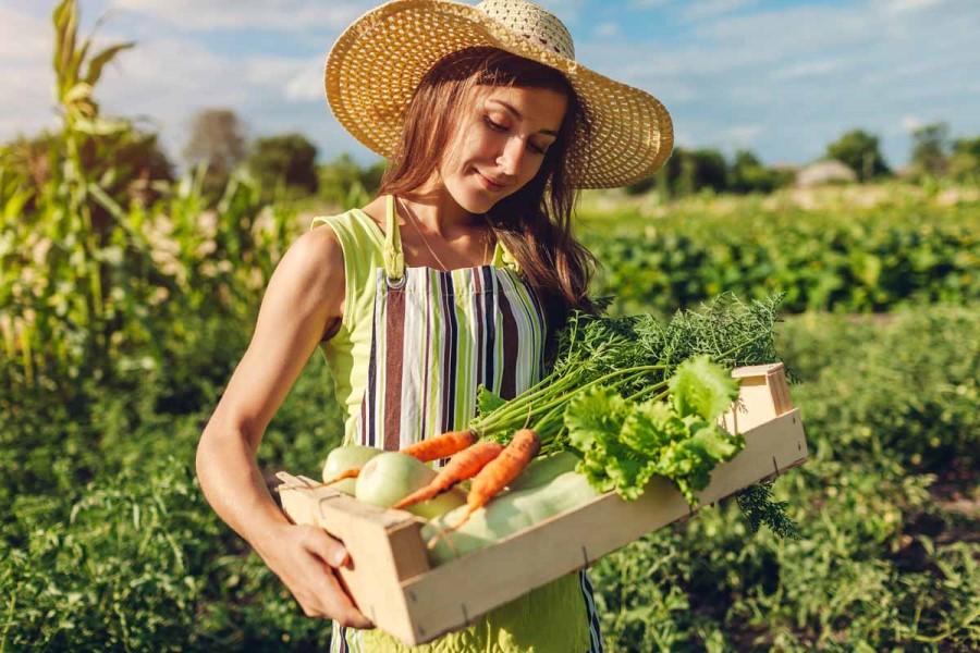 Damjan Zore: Kmetijstvo in trgovina v Evropi
