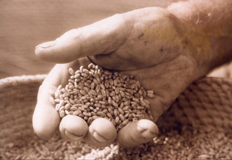Prelomno leto v življenju Dr. Zagožna je bilo 1988. Januarja tega leta je revija Mladina objavila njegov prispevek z naslovom »Bila je pšenica, bila je potica, zdaj pa raste plevel«.