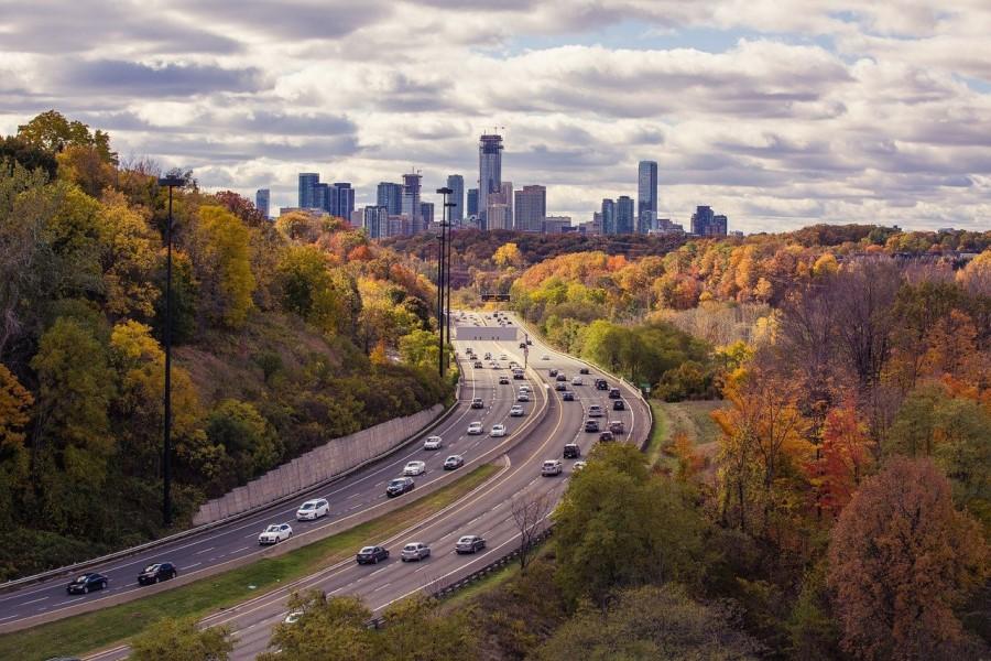V nekaterih državah po svetu je mednarodni izpit za avto obvezen.