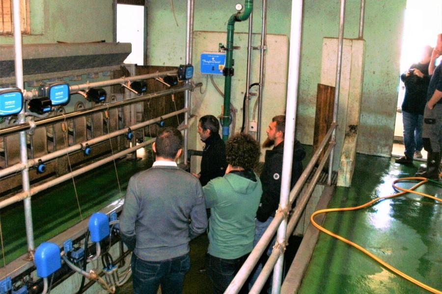 Molzišče je za kmetijo z mlečno drobnico najdražja in najpomembnejša naložba