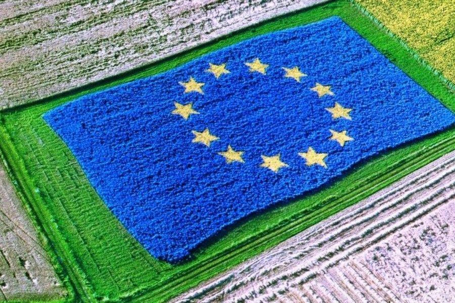 Prednostne naloge Sveta EU pod slovenskim predsedstvom: Kmetijstvo in ribištvo