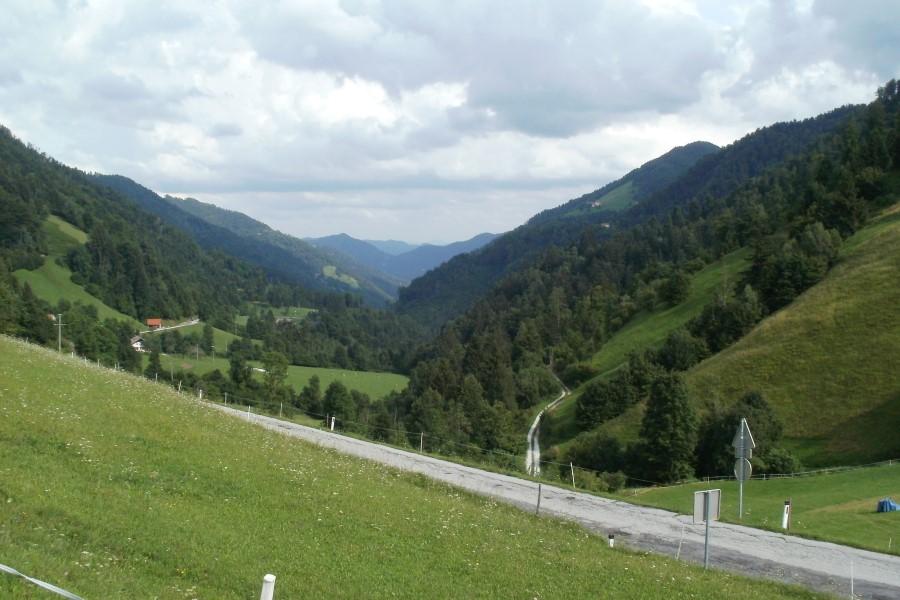 Milan pase poleti svoje ovce nad dolino Kanomeljščice
