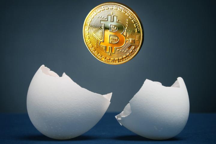 Začetki kriptovalute bitcoin