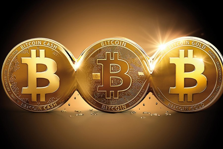 Ker večino kriptovalut ni mogoče »tiskati« in pošiljati v obtok, se počasi uveljavljajo kot hranilec vrednosti in zato predstavljajo zanimivo obliko naložbe, ki ima velik potencial za rast.