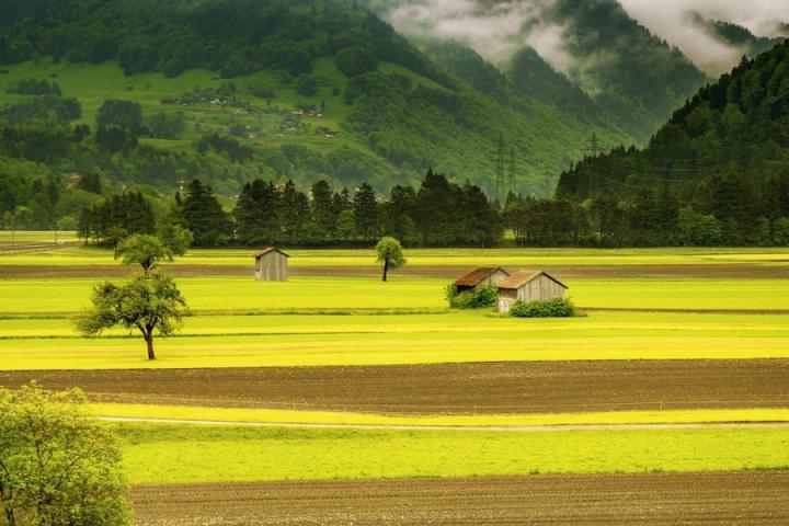 Strategija slovenskega kmetijstva